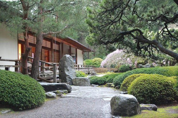 pdx_japanesegarden3